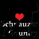 schnauzer schnoodle alberta logo